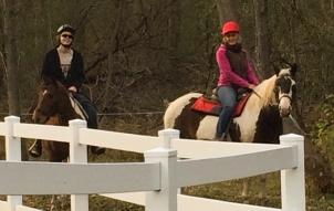 both horses 1