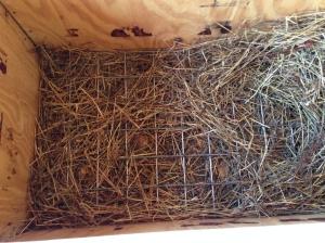 box feeder grate photo 3