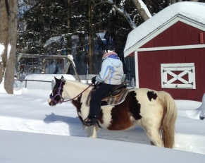 Cheyenne 2-2015 photo(1)