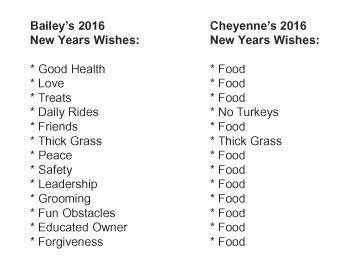 new years list