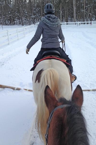 Bailey behind Cheyenne 1-2016