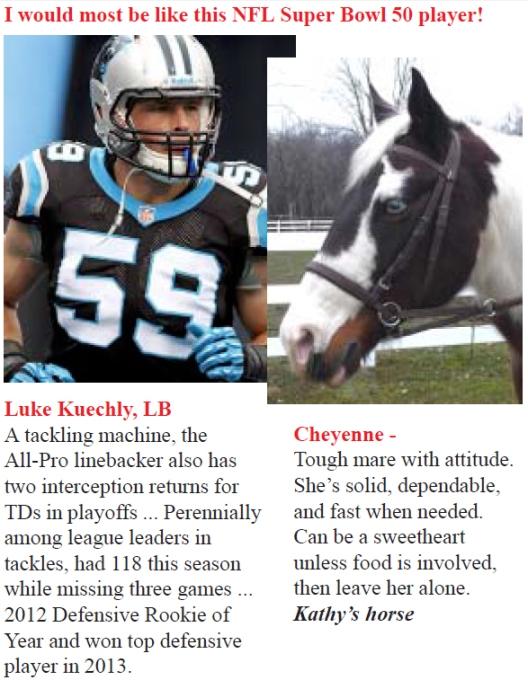 Super Bowl Cheyenne