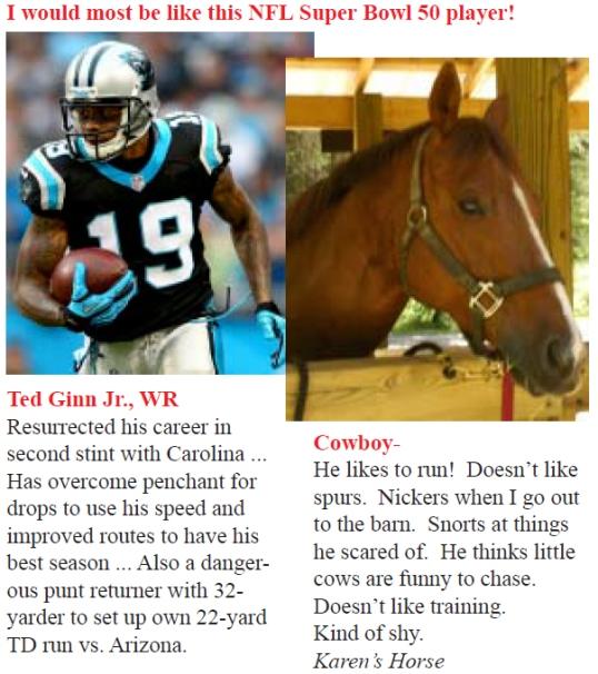 Super Bowl Cowboy