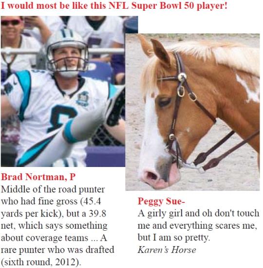 Super Bowl Peggy Sue