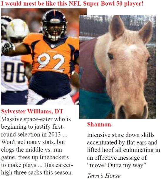 Super Bowl Shannon